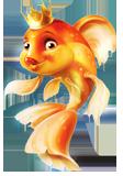 http://coralfish.ru/